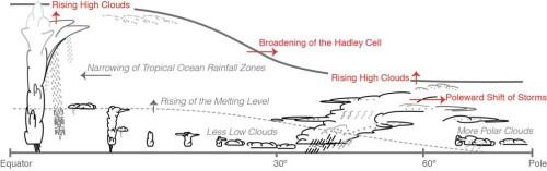 Veranderingen in bewolking als gevolg van opwarming van het klimaat, die ondersteund worden door zowel modellen als andere waarnemingen (bron: IPCC AR5, hoofdstuk 7)