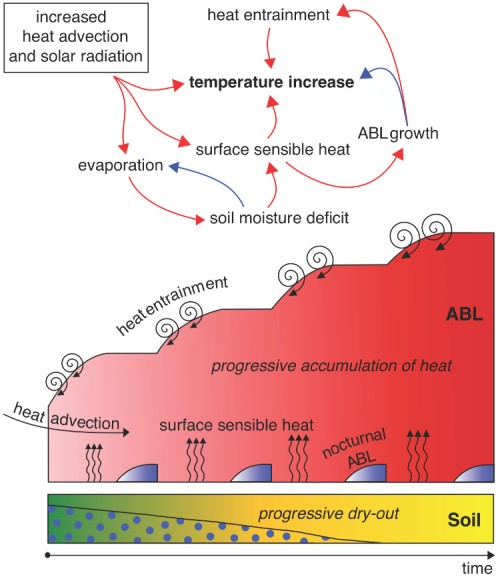 Figuur 2: Schematische weergave van de Interactie tussen bodem en atmosferische grenslaag (atmospheric boundary layer of ABL) tijdens een mega-hittegolf. Rode pijlen staan voor positieve, blauwe voor negatieve correlaties.