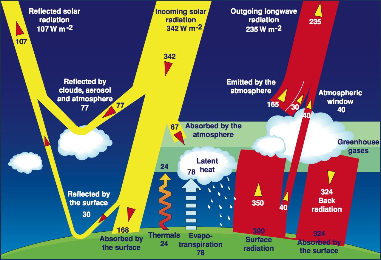 Beschrijf kort hoe Carbon dating werkt