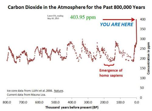 Carbon Dioxide in the Atmosphere for the past 800,000 Years