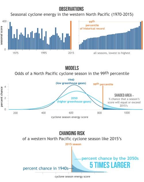 """Het cycloonseizoen 2015 was, uitgedrukt in """"accumulated cyclone energy"""" bijzonder actief in de noordwestelijke Stille Oceaan. Modelsimulaties laten zien dat de kans op een dergelijk seizoen groter wordt bij hogere broeikasgasconcentraties. In het midden van deze eeuw zou de kans 5 keer zo groot kunnen zijn als in de jaren '40 van de vorige eeuw. (Bron: NOAA Climate.gov, gebaseerd op Zang et al., 2016)"""